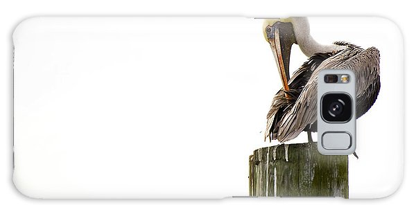 Brown Pelican On Piling Galaxy Case