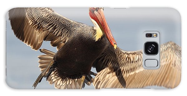 Brown Pelican Putting On The Brakes Galaxy Case