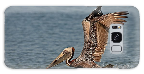 Brown Pelican Take Off Galaxy Case