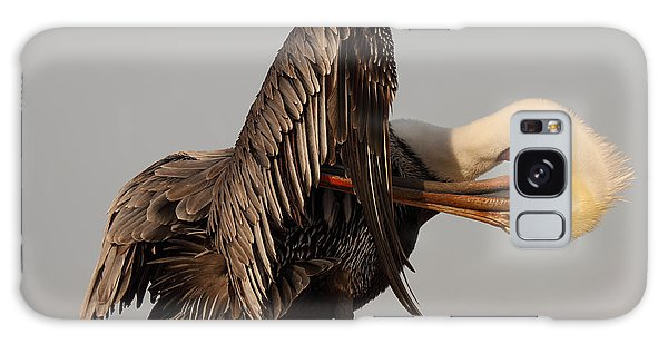 Brown Pelican With An Acrobatic Lean And Preen Galaxy Case by Max Allen