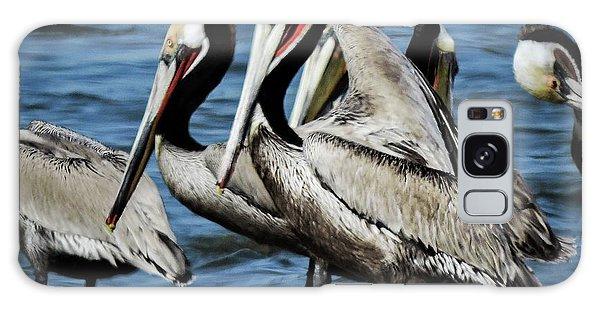Brown Pelicans Preening Galaxy Case
