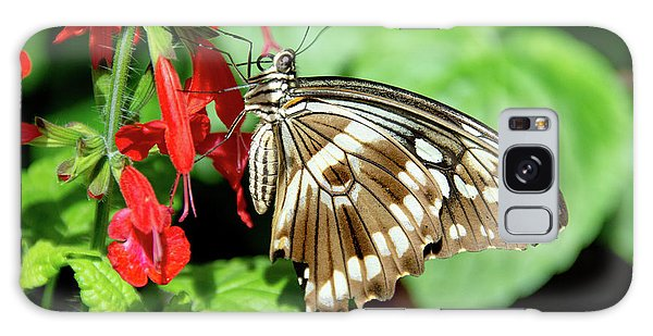 Brown Swallowtail Butterfly Galaxy Case
