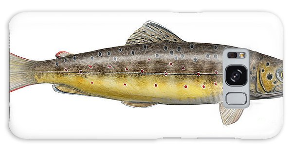 Brown Trout - Autochthonous - Indigenous - Salmo Trutta Morpha Fario - Salmo Trutta Fario Galaxy Case
