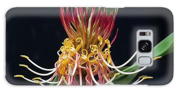 Brownea Macrophylla Tropical Flower Galaxy Case