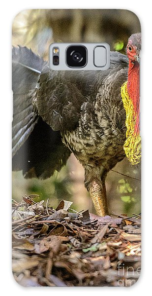Brush Turkey Galaxy Case