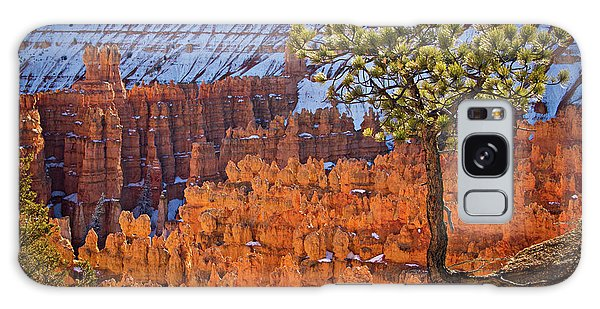 Galaxy Case featuring the photograph Bryce Canyon by Wesley Aston