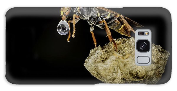 Bubble Blowing Wasp Galaxy Case