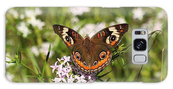 Buckeye Butterfly Posing Galaxy Case