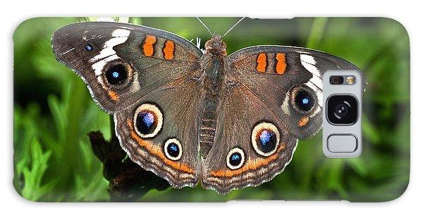 Buckeye Butterfly Galaxy Case