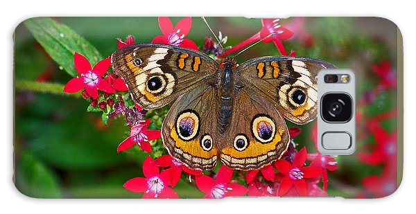 Buckeye On Pentas Galaxy Case by Judy Wanamaker