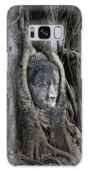 Buddha Head In Tree Galaxy Case
