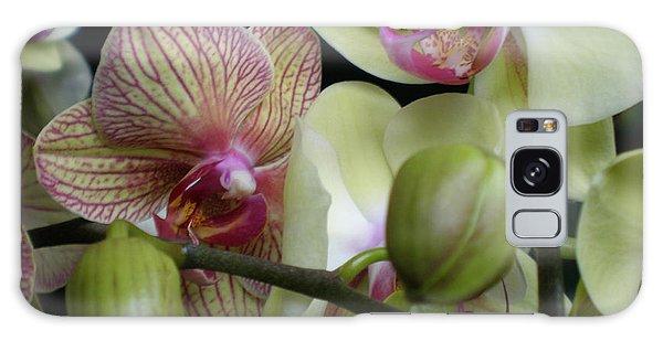Budding Orchids  Galaxy Case