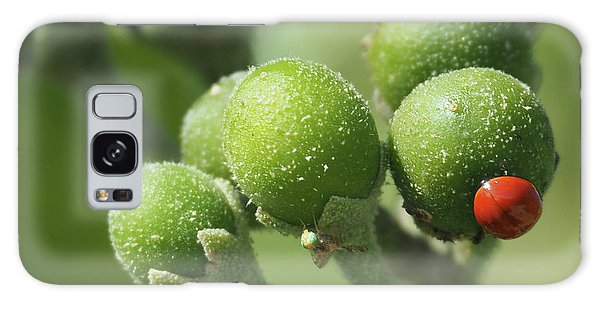 Buds And Bugs Galaxy Case