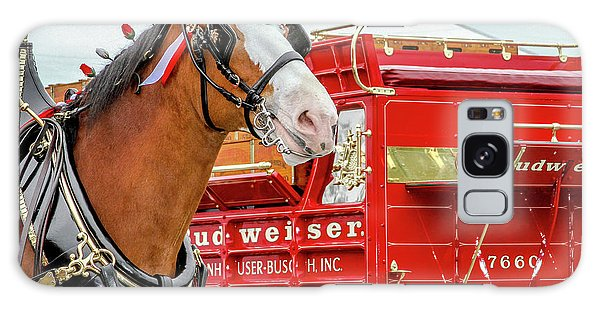 Budweiser Clydesdale In Full Dress Galaxy Case