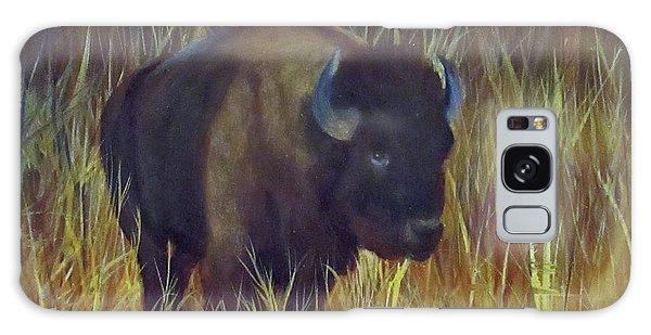 Buffalo Grazing Galaxy Case by Roseann Gilmore