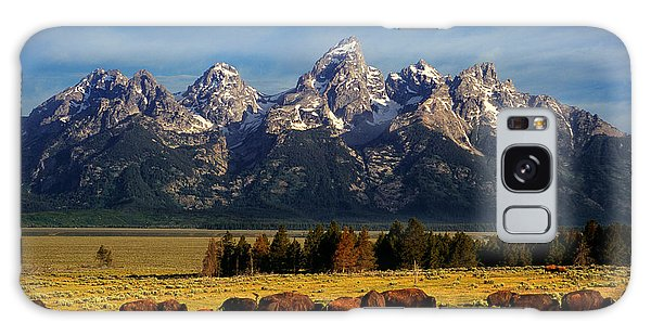 Teton Galaxy Case - Buffalo Under Tetons by Leland D Howard
