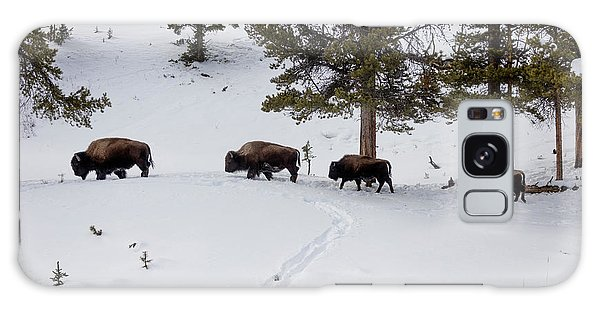 Buffaloes In Yellowstone National Park Galaxy Case by Carol M Highsmith