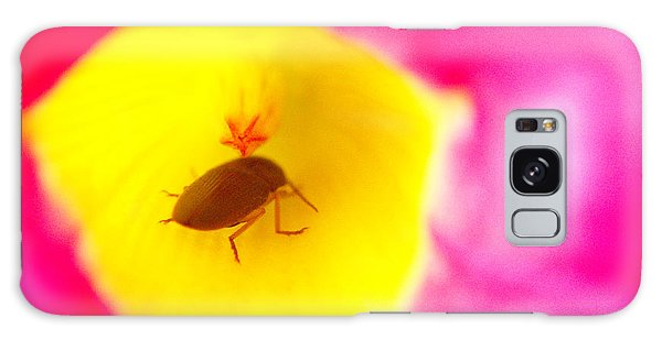 Bug In Pink And Yellow Flower  Galaxy Case by Ben and Raisa Gertsberg