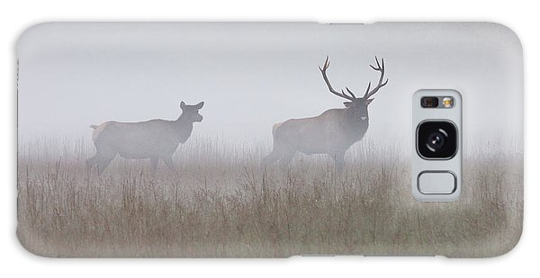 Bull And Cow Elk In Fog - September 30 2016 Galaxy Case