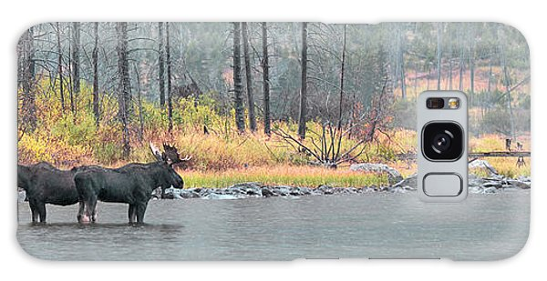 Bull And Cow Moose In East Rosebud Lake Montana Galaxy Case