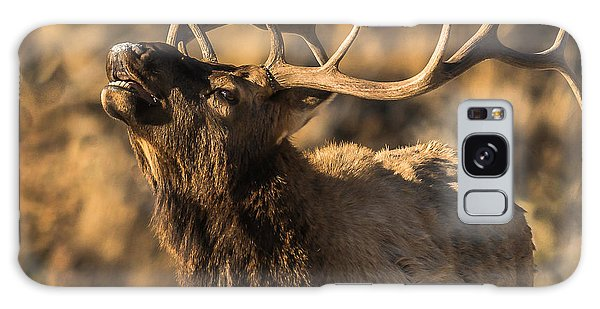 Bull Elk Bugle In Fall Galaxy Case