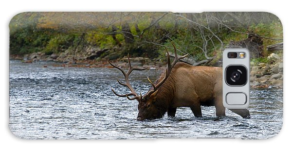 Bull Elk Crossing The River Galaxy Case
