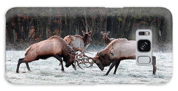 Bull Elk Fighting In Boxley Valley Galaxy Case