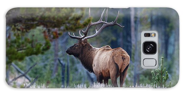 Bull Elk In Forest Galaxy Case