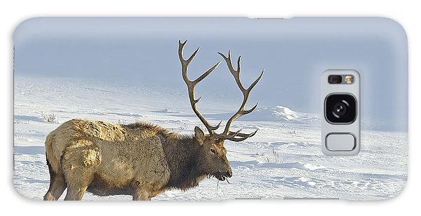 Bull Elk In Snow Galaxy Case