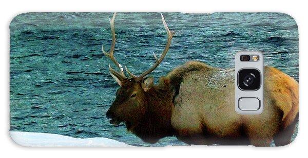 Bull Elk In Winter Galaxy Case
