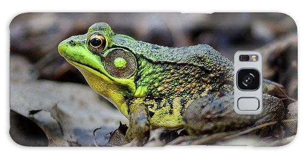 Bull Frog Galaxy Case