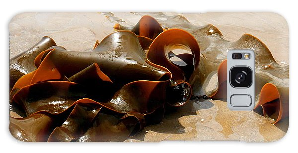 Bull Kelp Galaxy Case