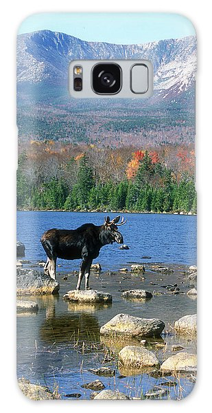 Bull Moose Below Mount Katahdin Galaxy Case by John Burk