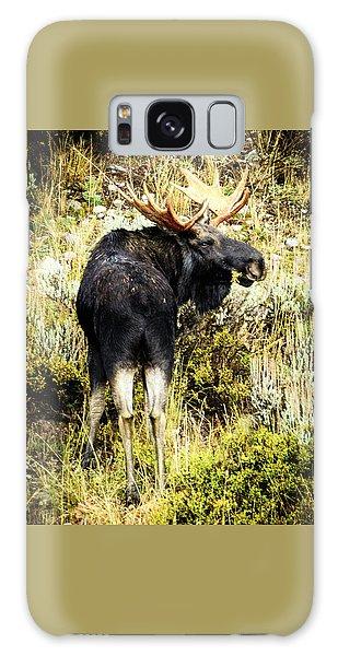 Bull Moose Galaxy Case