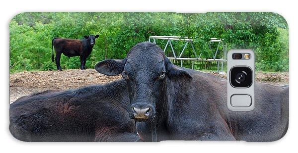 Bull Relaxing Galaxy Case