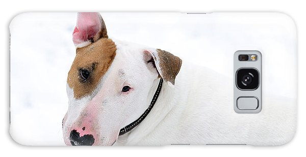 Bull Terrier Galaxy Case by Diane Giurco