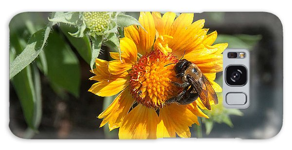 Bumble Bee Collecting Pollen On Sunflower Galaxy Case