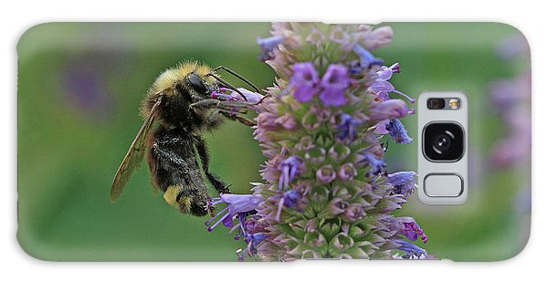 Bumble Bee Galaxy Case