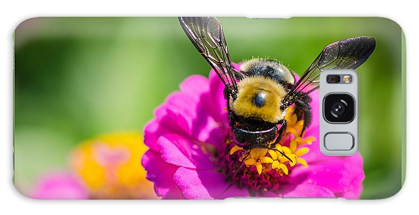 Bumble Bee Macro Image Galaxy Case
