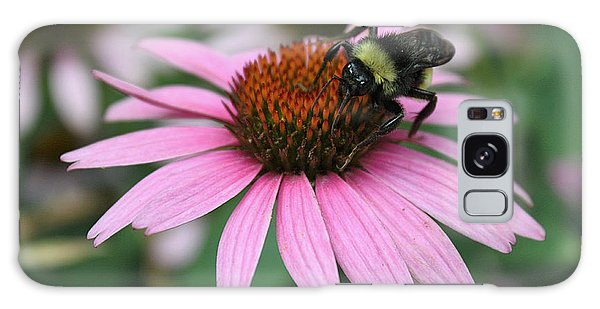 Bumble Bee On Pink Coneflower Galaxy Case