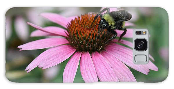 Bumble Bee On Pink Cone Flower Galaxy Case by Sheila Brown