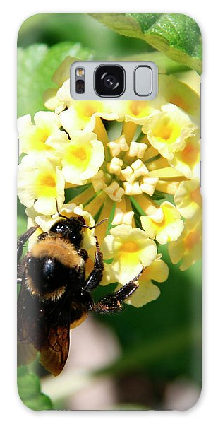 Bumble Bee On Yellow Flowers Galaxy Case by George Jones
