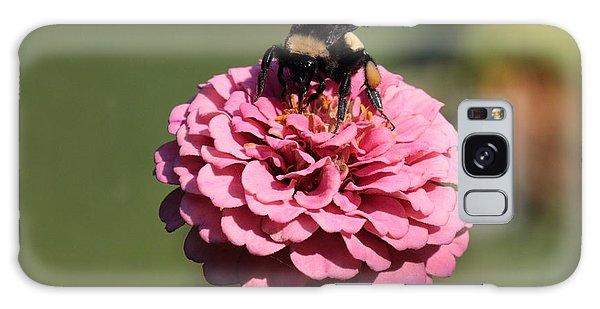 Bumble Bee On Zinnia 2649 Galaxy Case