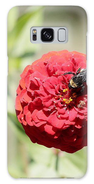 Bumble Bee On Zinnia Galaxy Case