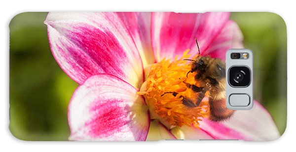 Bumble Bee Pollination Galaxy Case