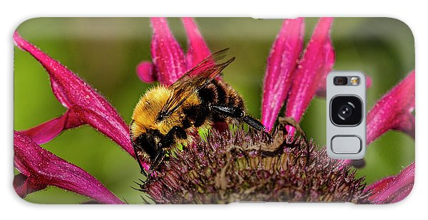 Bumble Bee Galaxy Case