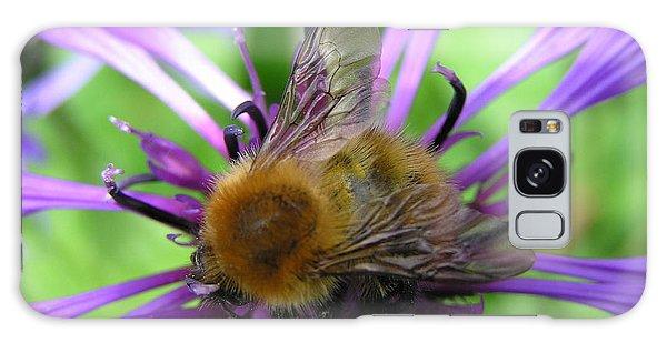Bumblebee In Blue Galaxy Case