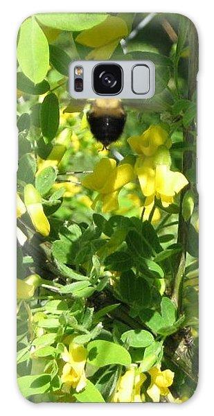 Bumblebee In Flight In Yellow Flowers Galaxy Case