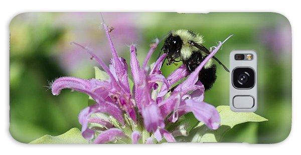 Bumblebee On Bee Balm Galaxy Case