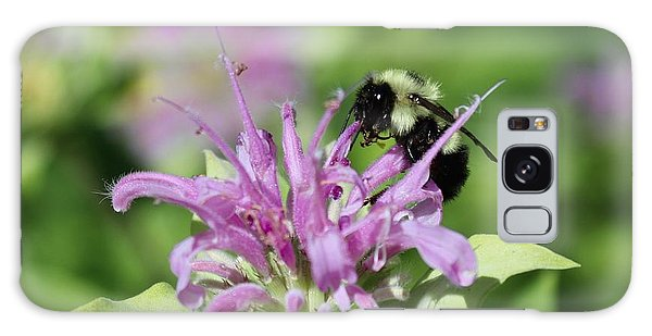 Bumblebee On Bee Balm Galaxy Case